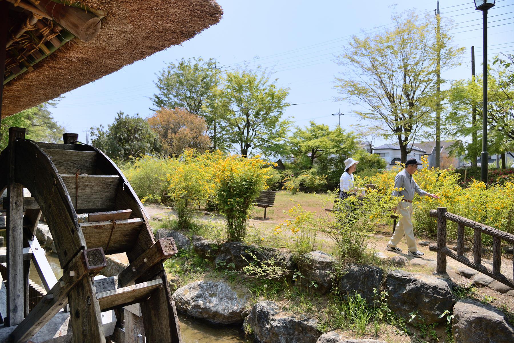 山吹の里 山吹の里歴史公園