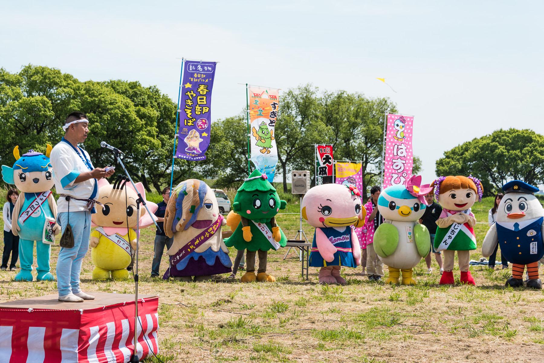 大凧あげ祭り 江戸川河川敷広場