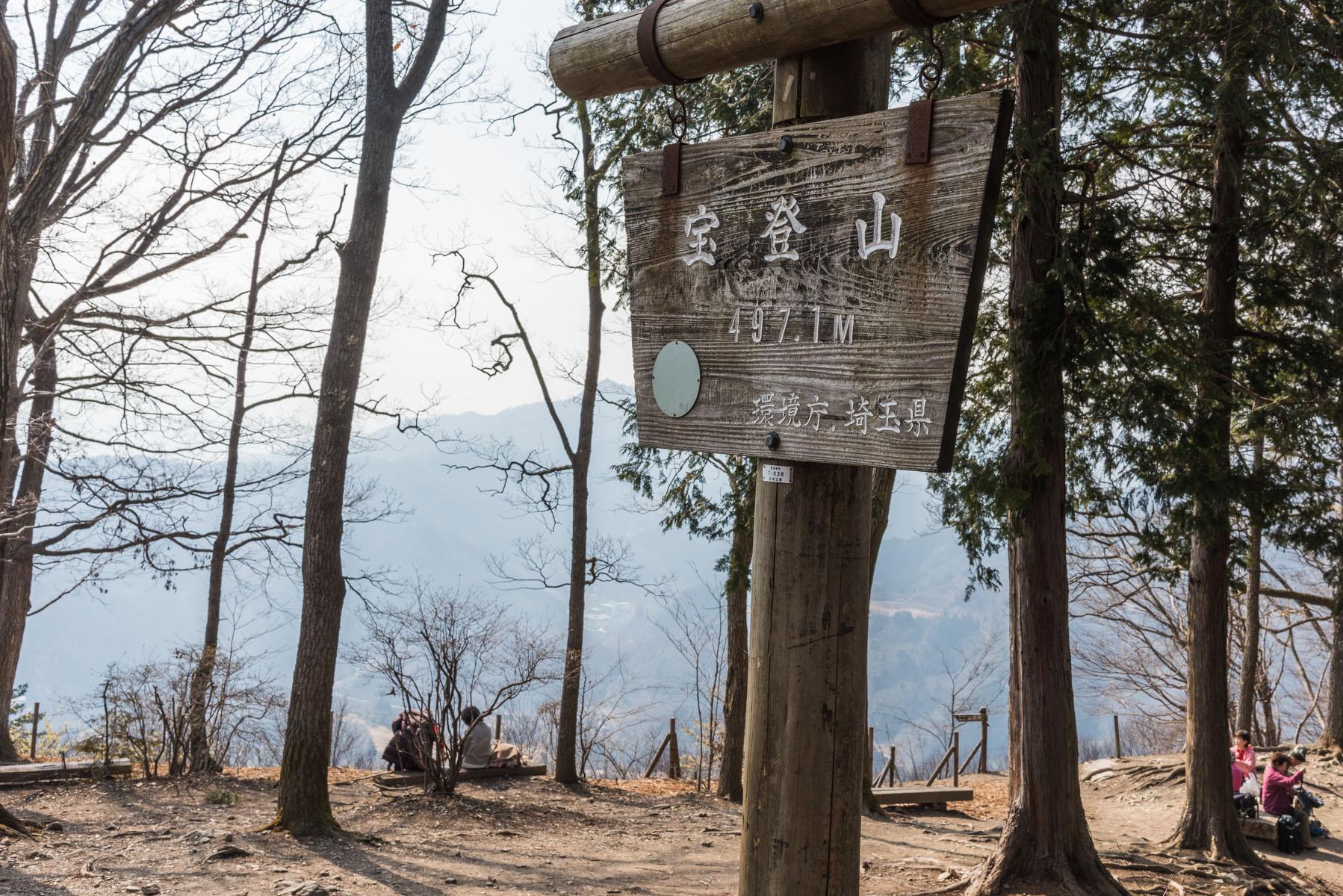 宝登山の臘梅(ロウバイ) 長瀞町宝登山ロウバイ園