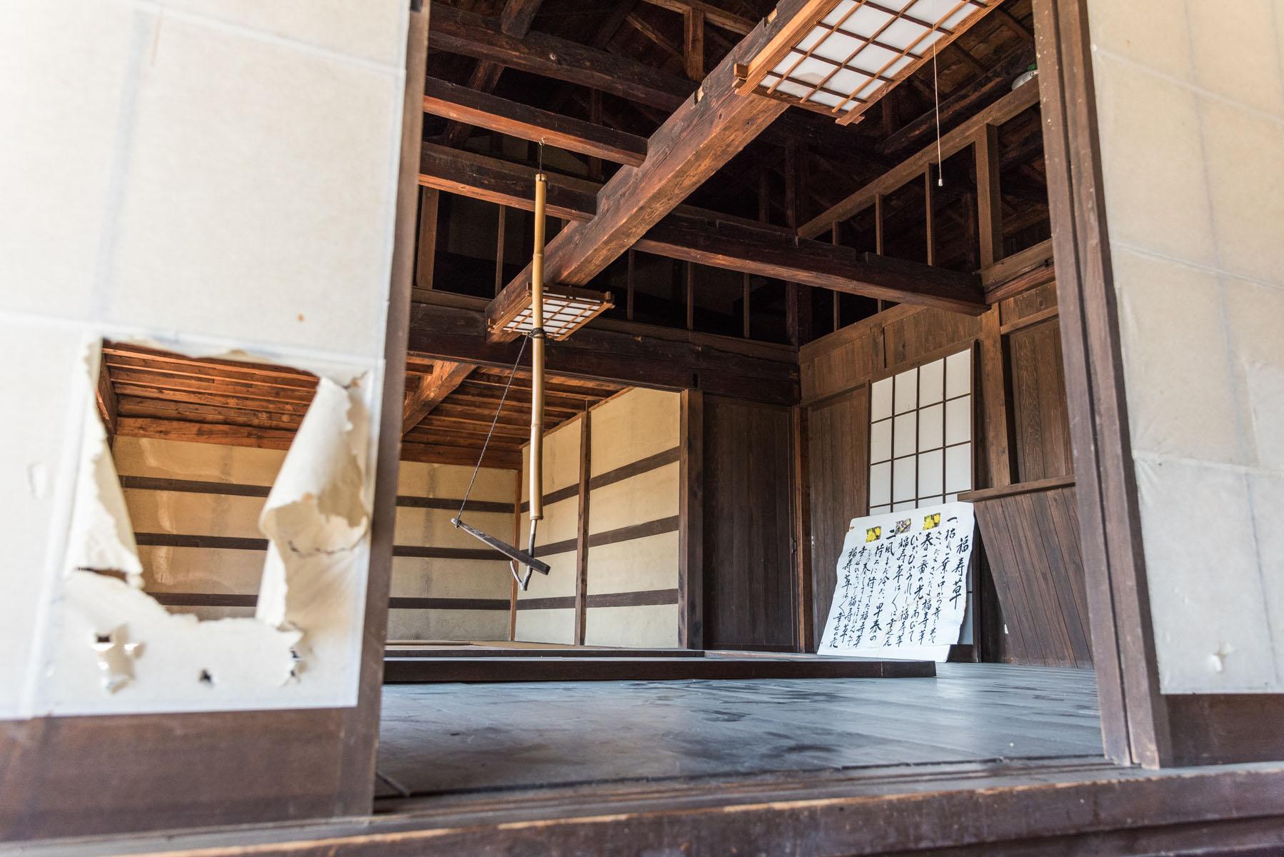 福寿草とロウバイ 両神国民休養地