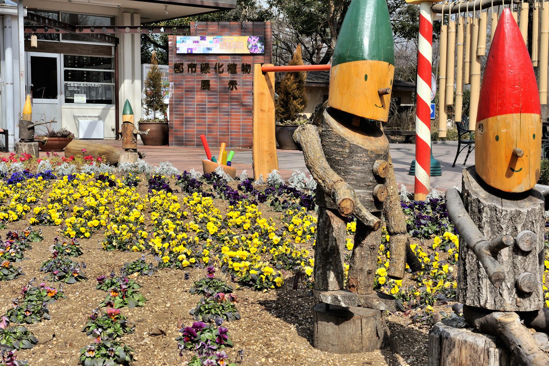 早春の草花 国営武蔵丘陵森林公園
