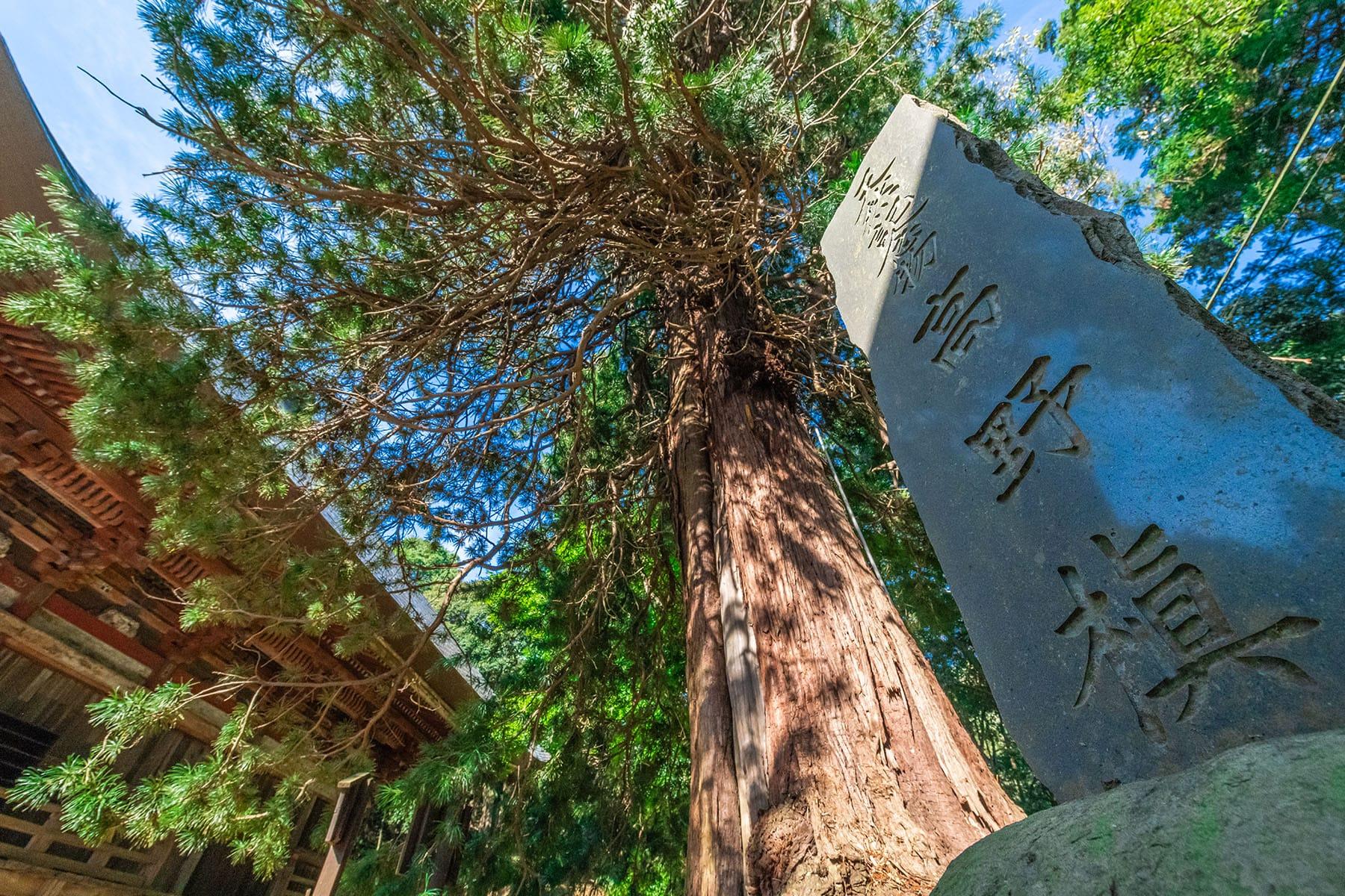 坂東札所 第20番 【獨鈷山・西明寺】