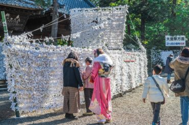 大宮氷川神社の初詣