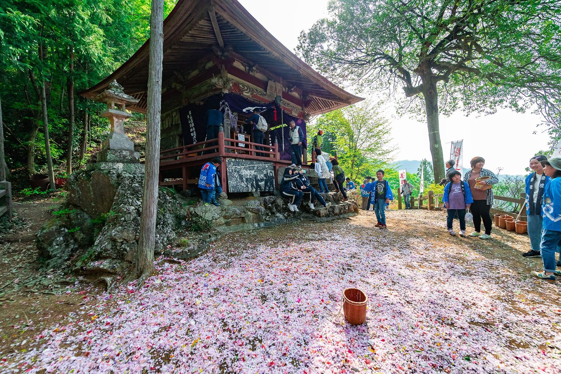 塚越の花まつり(米山薬師堂) フォトさいたま