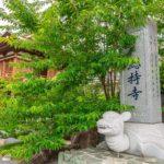 西国札所 第22番【補陀洛山・総持寺】 | フォトさいたま