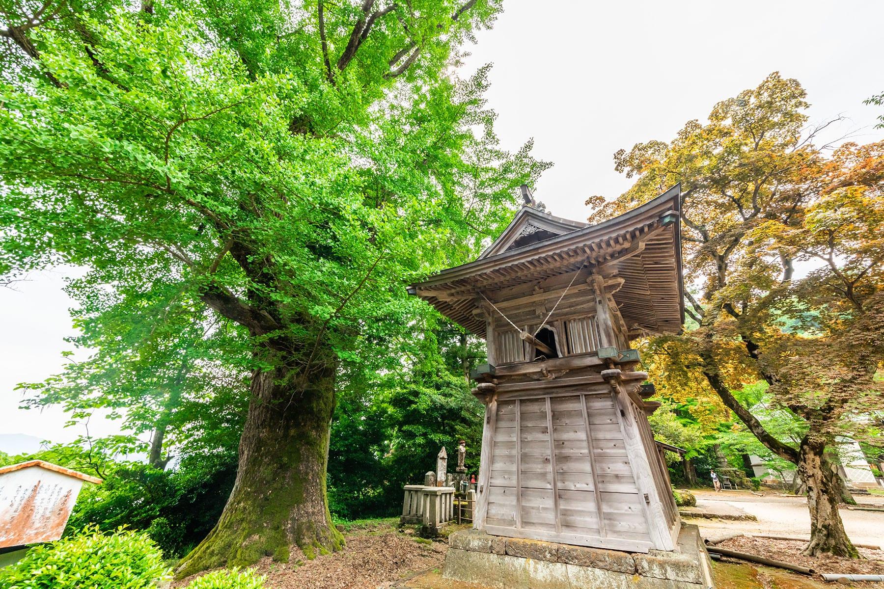 西国札所 第29番【青葉山・松尾寺】 | フォトさいたま