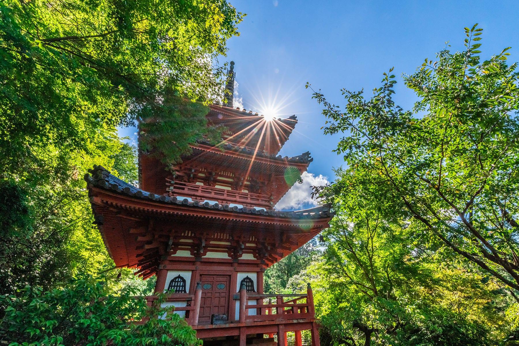 西国札所 第10番【明星山・三室戸寺】 | フォトさいたま