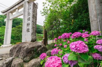 本殿のない金鑚神社